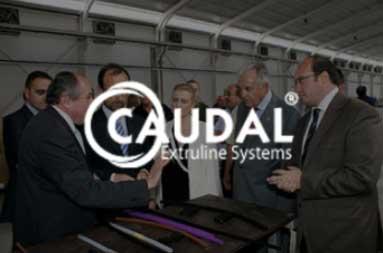 Caudal implanta dvlogistic y Microsoft Dynamics 365 business central